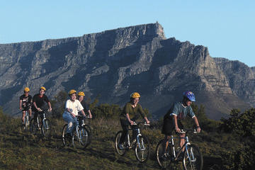 Table Mountain Bike Tour from Cape...