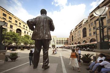 Visita turística de medio día por Johannesburgo