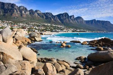 Visite de la péninsule du Cap au...