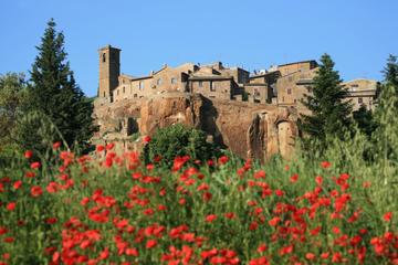 Dagsresa till Assisi och Orvieto från Rom
