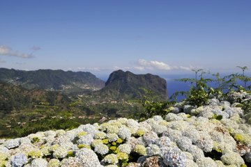 Dia inteiro no Leste de Madeira...