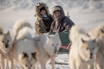 Dogsledding Trip in Ilulissat