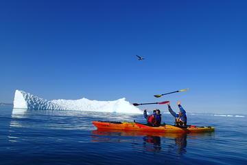 Kayaking Morning Tour in Ilulissat