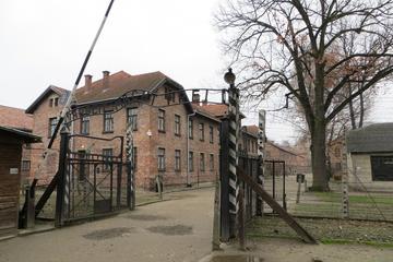 7-Hour Day Tour to the Auschwitz-Birkenau Museum Tour from Krakow