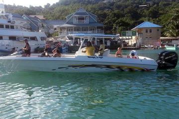 St Lucia Land and Sea Tour