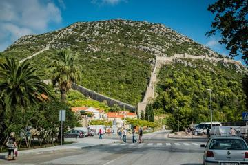 Peljesac Peninsula Private Wine Tour from Dubrovnik