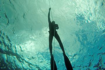 Curso SSI de mergulho livre - Nível 1