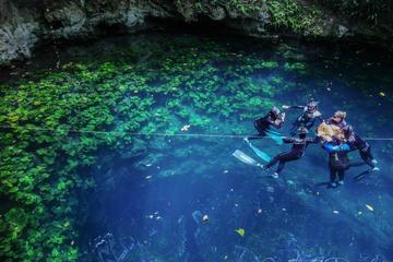 Descoberta de mergulho livre