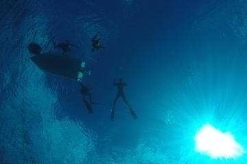 Diversão com mergulho livre em Cozumel, saindo de Playa del Carmen