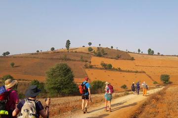 1 Night 2 Days Trek from Kalaw to ...