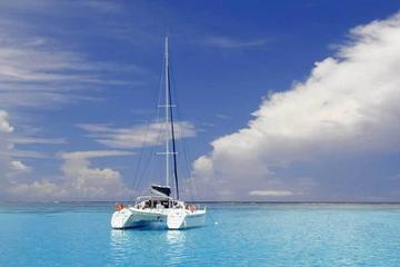 Full-Day Northern Catamaran Cruise: Coin de Mire and Ile Plate Island