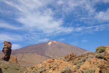 Halbtägige Tour zum Nationalpark Teide
