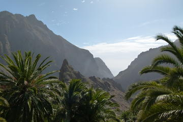 Tenerife Highlights Full Day Tour