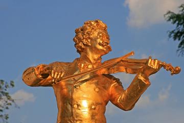 Combinado musical en Viena: Tarjeta Vienna Card, concierto de Mozart...