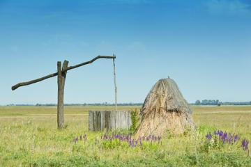 Excursion d'une journée dans les grandes plaines de Puszta et à...