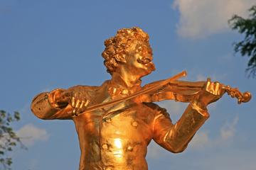 Forfait Musique de Vienne: Vienna Card, concert Mozart, maison de la...