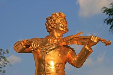 Pacchetto combinato Vienna musicale: Vienna Card, concerto di Mozart