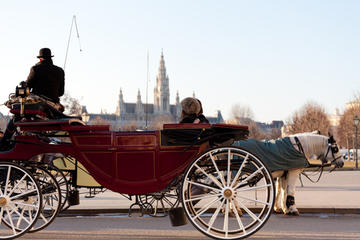 Tour combinato di Vienna romantica: Vienna Card, tour in carrozza a