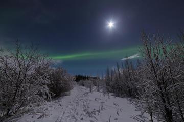 Small-Group Aurora Borealis - Northern Lights Tour