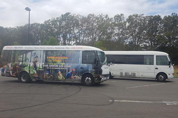 Gold Coast Airport Shared Arrival Shuttle Service with Wheelchair...