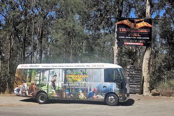 Gold Coast to Treetop Challenge and Thunderbird Park