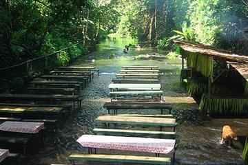 Excursion privée: Villa Escudero avec déjeuner au départ de Manille