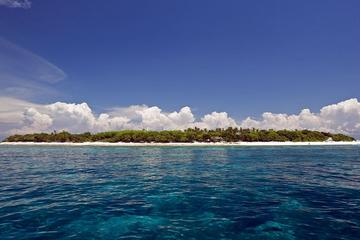 Private Balicasag Island Trip with Lunch in Bohol
