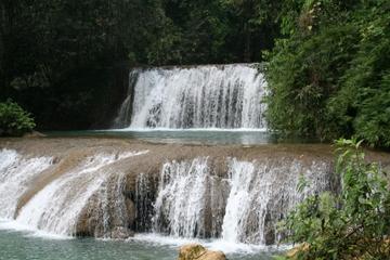 Excursión de un día desde Negril al río Negro, las cataratas YS y...
