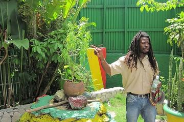 Falmouth Shore Excursion: Bob Marley Experience
