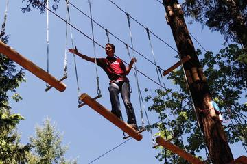 Book Maple Ridge Aerial Adventure Course on Viator