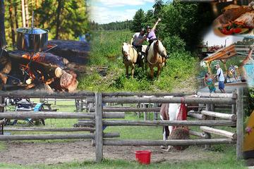 Vacances de 3jours à cheval dans la vallée de la rivière des...