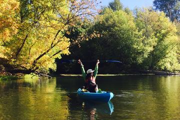 Willamette River Paddle and Brew...