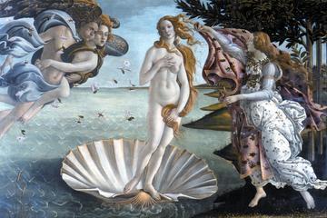 Galería de los Uffizi y Galería de la Academia: Tour independiente...