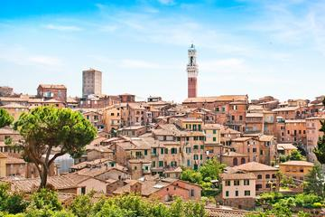 Independent Trip to Siena from Florence with Private Transport