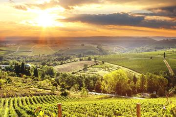 Private Best of Chianti Classico Tour 2 Delicious Wine Tastings and 3 Charming Medieval Villages with Wine and Dine in the Chianti Vineyards