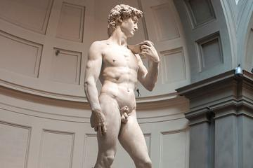 Skip the Line Accademia Gallery Admission and Florence Walking Tour