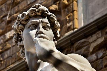 Sla de wachtrij over: rondleiding door galerie Accademia in Florence