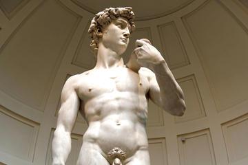 Visita independente às Galerias da Academia e Uffizi com almoço...