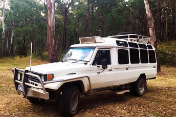 Private Tour: Wombat State Forest Wildlife Safari 4WD Tour from Melbourne