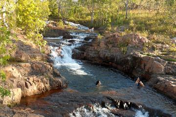 3-Day Kakadu and Litchfield Green Season Tour from Darwin
