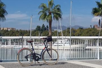 Malaga Nature Bike Tour