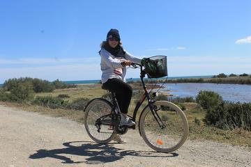 Recorrido en bicicleta por la naturaleza de Málaga
