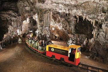 Excursion to Postojna Cave and Predjama...