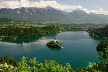 Führung zum Bled-See und nach...