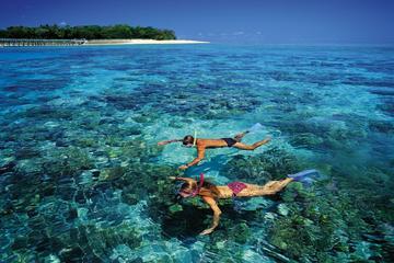 Green Island heldagstur fra Cairns