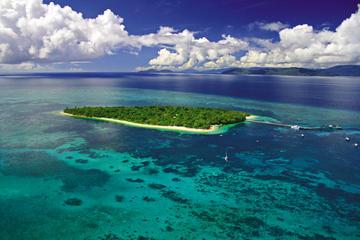Paquete combinado de 2 días en un arrecife y un bosque tropical...