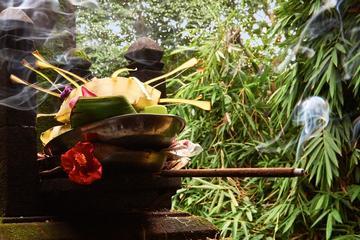 Private Ubad Ubud Spiritual Healer