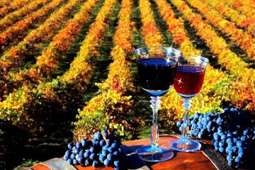 4-Day Wine Tour in Moldova from...