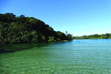 Brunswick Heads Rainforest Eco-Cruise