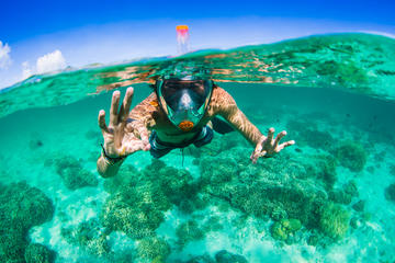 Aria Snorkel Mask Rental